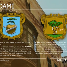 The ADAMI coat of arms