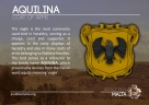 The AQUILINA coat of arms