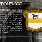The DEDOMENICO coat of arms