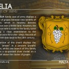 The DELIA coat of arms