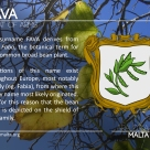 The FAVA coat of arms