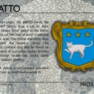 The GATTO coat of arms
