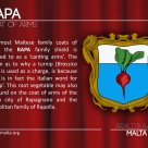 The RAPA coat of arms