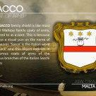 The SACCO coat of arms